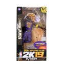 Lebron James 2k19 Purple